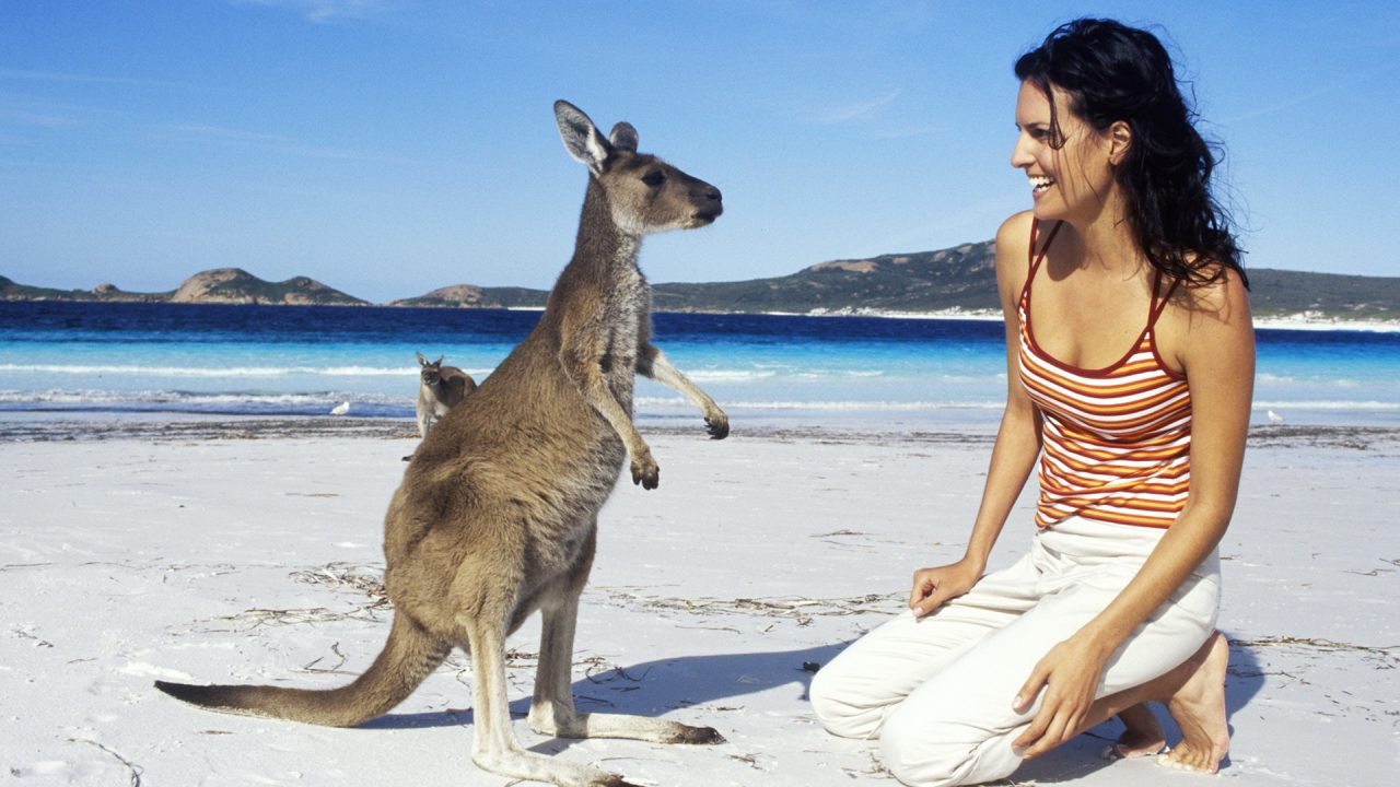 http://newstar.bold-themes.com/travel/wp-content/uploads/sites/12/2017/11/australia-1280x720.jpg