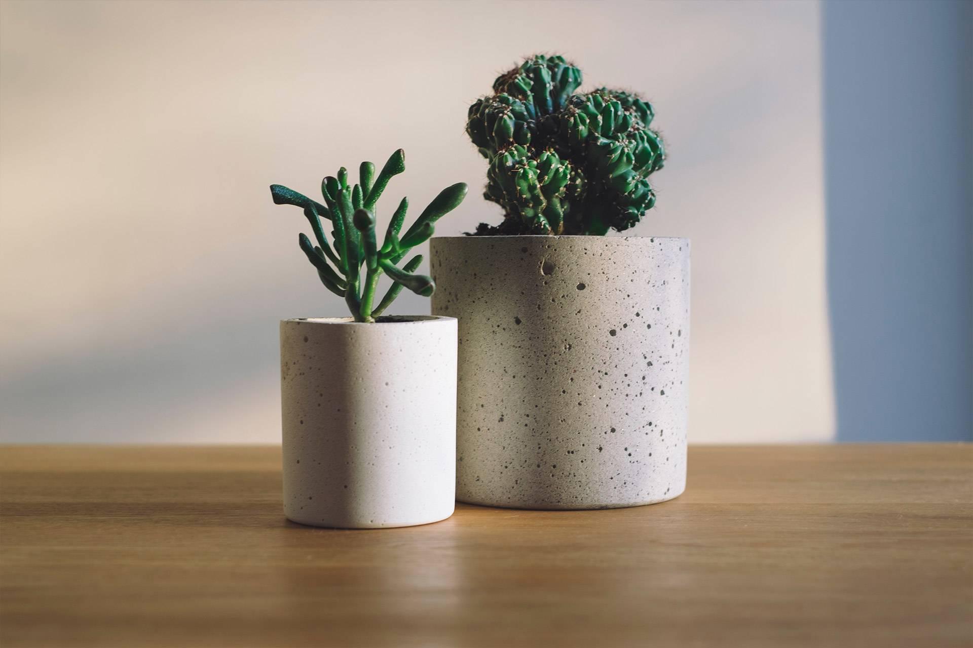 p_2_concrete_pot